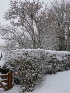 Sauf, si vous vivez sur une île déserte.... dans Ma Normandie neige.1-225x300